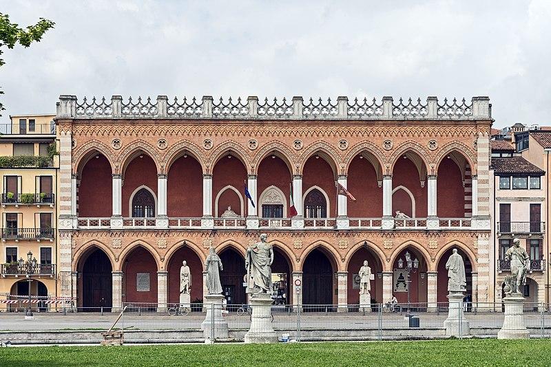 O vrăjitoare din Padova a sacrificat toate pisicile din oraş pentru ritualuri